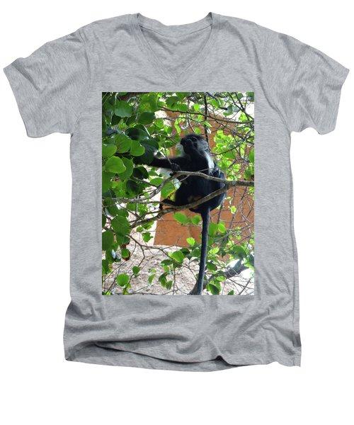 Colobus Monkey Eating Leaves In A Tree - Full Body Men's V-Neck T-Shirt