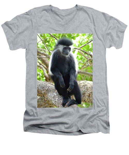Colobus Monkey Sitting In A Tree 2 Men's V-Neck T-Shirt