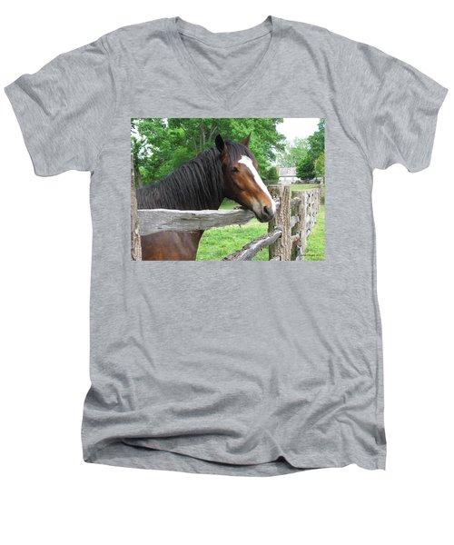 Colonial Horse Men's V-Neck T-Shirt