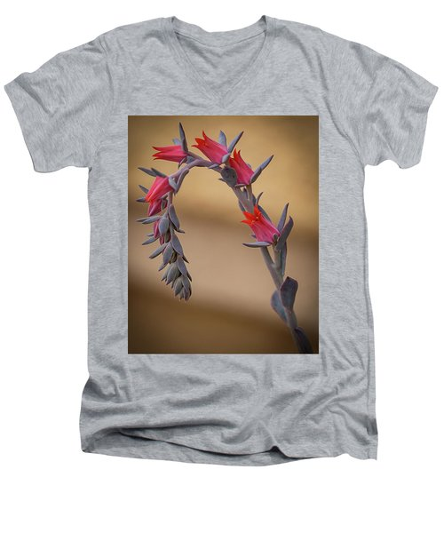 Color And Curve Men's V-Neck T-Shirt