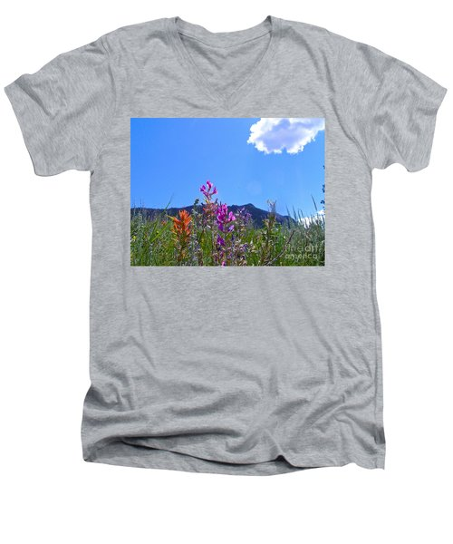 Colorado Colors Men's V-Neck T-Shirt