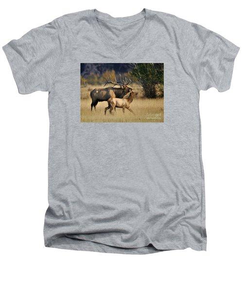 Colorado Elk  Men's V-Neck T-Shirt by Nava Thompson