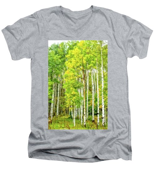 Colorado Fall Foliage Men's V-Neck T-Shirt
