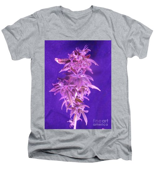 Colorado Rocksy Men's V-Neck T-Shirt by Kelly Awad