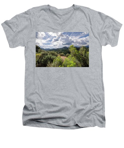 Colorado Summer Men's V-Neck T-Shirt