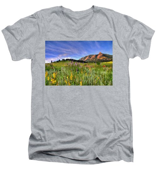 Colorado Wildflowers Men's V-Neck T-Shirt by Scott Mahon
