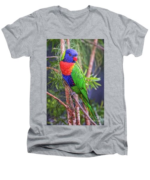 Colorful Parakeet Men's V-Neck T-Shirt