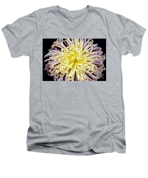 Colorful Spider Chrysanthemum   Men's V-Neck T-Shirt