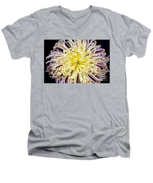 Colorful Spider Chrysanthemum   Men's V-Neck T-Shirt