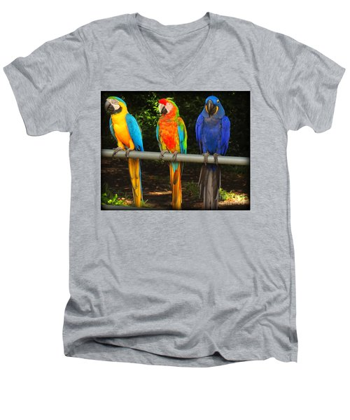 Colorful Trio Men's V-Neck T-Shirt
