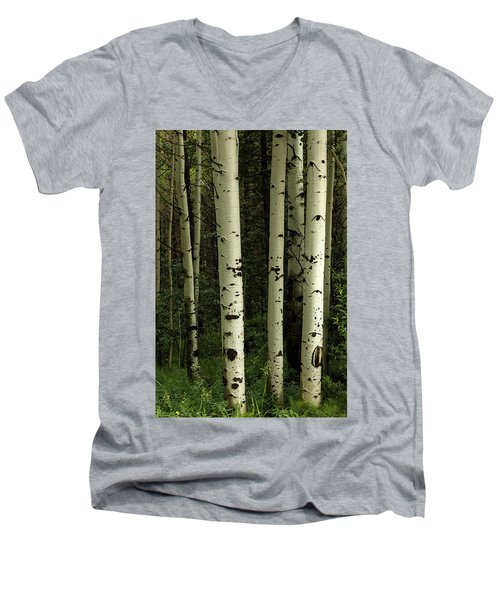 Men's V-Neck T-Shirt featuring the photograph Colors And Texture Of A Forest Portrait by James BO Insogna