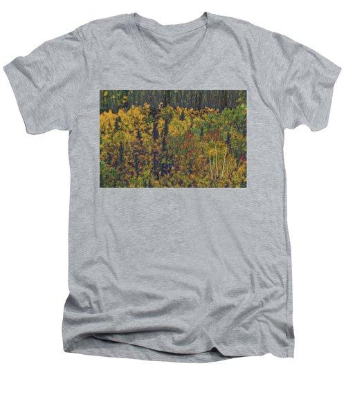 Colors Of Denali Men's V-Neck T-Shirt
