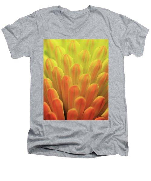 Colors Of The Sun Men's V-Neck T-Shirt