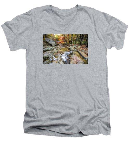 Colour Of Autumn Men's V-Neck T-Shirt