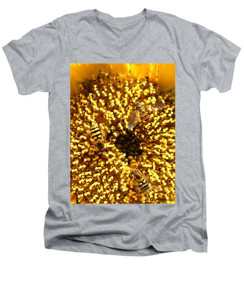 Colour Of Honey Men's V-Neck T-Shirt