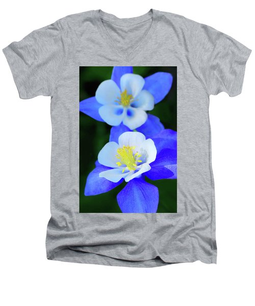 Columbine Day Men's V-Neck T-Shirt
