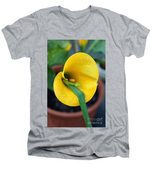 Come Out Come Out Men's V-Neck T-Shirt by Marie Neder