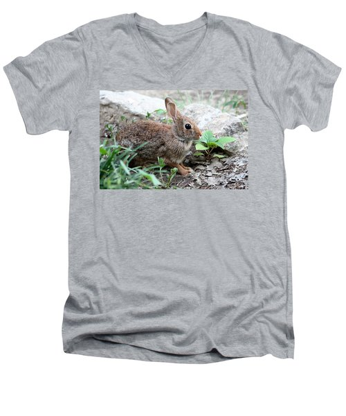 Men's V-Neck T-Shirt featuring the photograph Coming Out Of Hiding by Sheila Brown