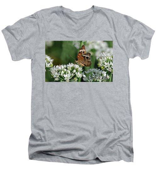 Common Buckeye Butterfly Men's V-Neck T-Shirt by Diane Giurco