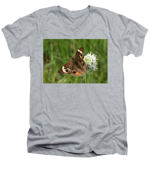 Common Buckeye Butterfly On Wildflower Men's V-Neck T-Shirt by Sheila Brown