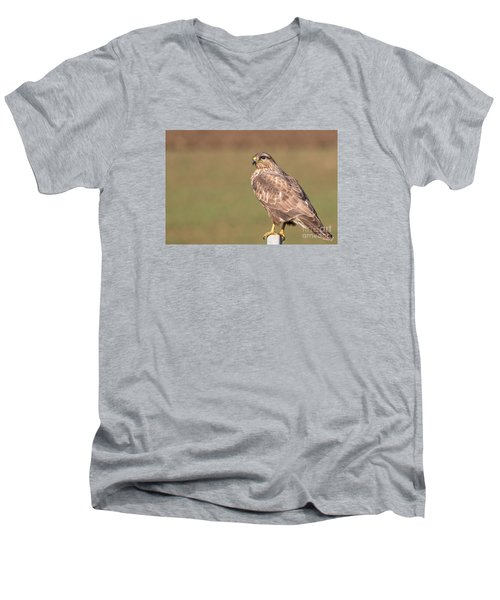 Men's V-Neck T-Shirt featuring the photograph Common Buzzard Along The Highway Nis Budapest by Jivko Nakev