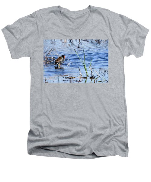 Common Gallinule Men's V-Neck T-Shirt by Gary Wightman