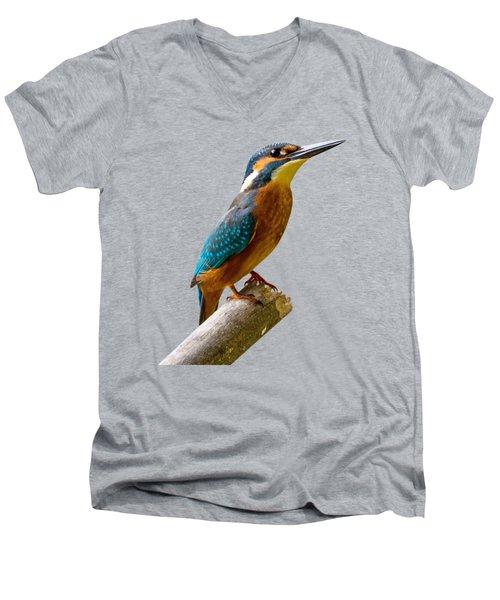 Common Kingfisher Alcedo Atthis Men's V-Neck T-Shirt