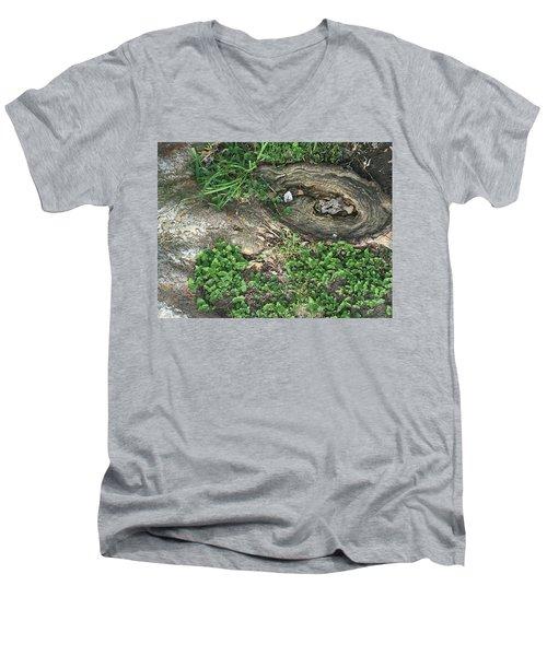 Composition In Trees Men's V-Neck T-Shirt