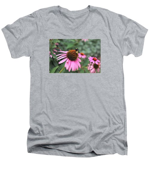 Men's V-Neck T-Shirt featuring the photograph Cone Flowers And Bee by Sheila Brown