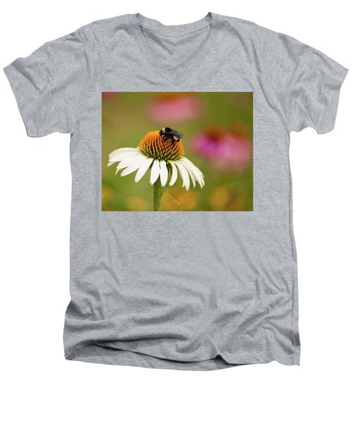Coneflower And Bee Men's V-Neck T-Shirt by Phyllis Peterson