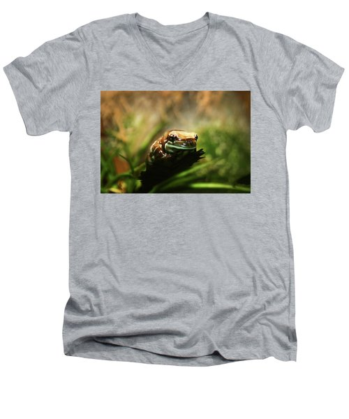 Men's V-Neck T-Shirt featuring the photograph Content by Anthony Jones