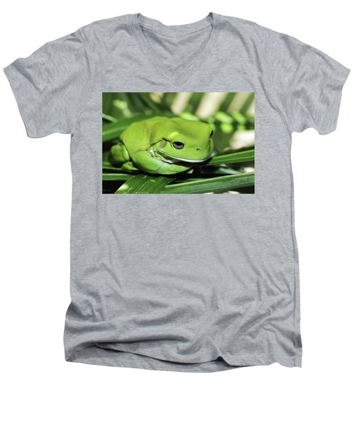 Cool Green Frog 001 Men's V-Neck T-Shirt by Kevin Chippindall