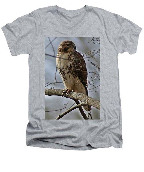 Cooper's Hawk 2 Men's V-Neck T-Shirt by Joe Faherty