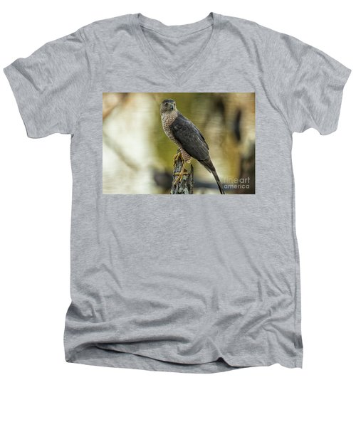 Cooper's Hawk Men's V-Neck T-Shirt