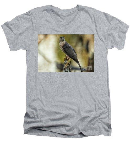 Cooper's Hawk Men's V-Neck T-Shirt