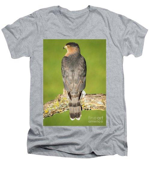 Cooper's Hawk In The Backyard Men's V-Neck T-Shirt