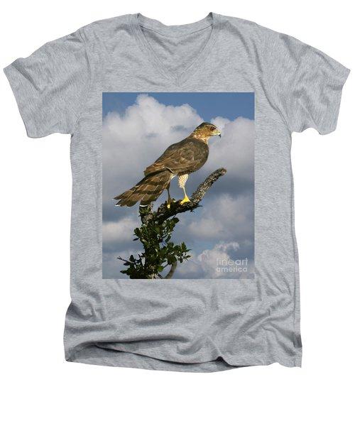 Cooper's Hawk On Watch Men's V-Neck T-Shirt