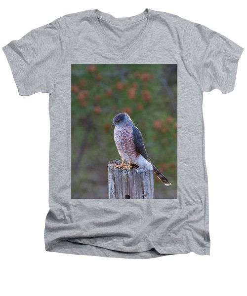 Coopers Hawk Perched Men's V-Neck T-Shirt