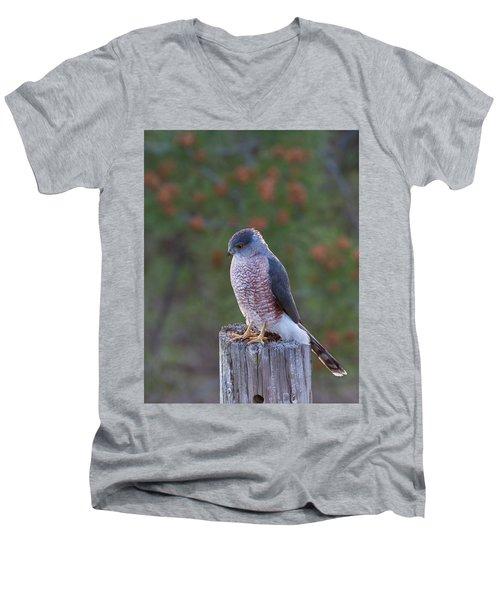 Coopers Hawk Perched Men's V-Neck T-Shirt