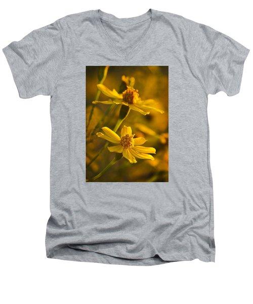 Coreopsis Verticillata 3 Men's V-Neck T-Shirt