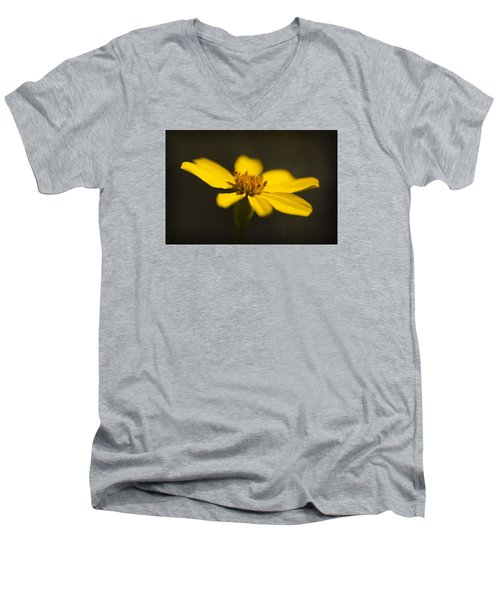 Coreopsis Verticillata Men's V-Neck T-Shirt