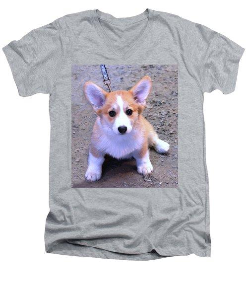 Corgi Puppy Men's V-Neck T-Shirt