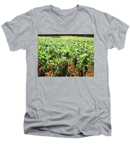 Men's V-Neck T-Shirt featuring the photograph Corn Island by Beto Machado