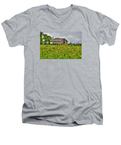 Corn Tops Men's V-Neck T-Shirt