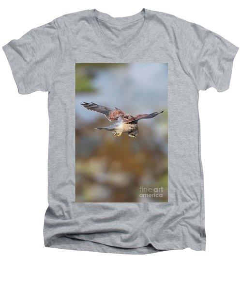 Men's V-Neck T-Shirt featuring the photograph Cornish Kestrel Hunting 2 by Nicholas Burningham