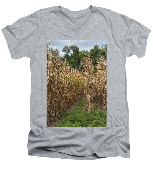 Cornstalks Men's V-Neck T-Shirt