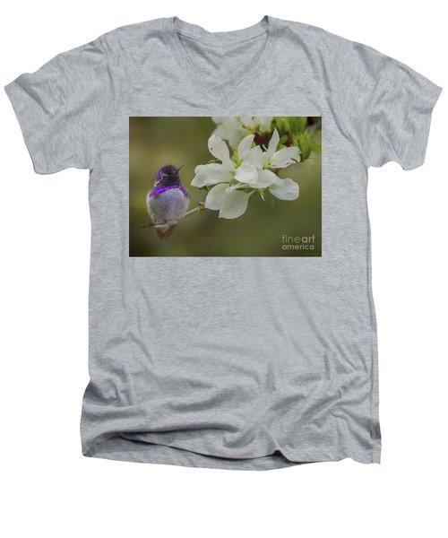 Costas Hummingbird On An Anacacho Orchid Branch Men's V-Neck T-Shirt