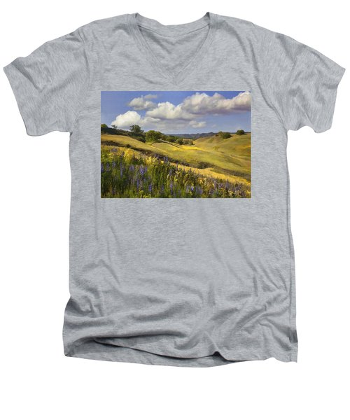 Cottonwood Canyon Men's V-Neck T-Shirt