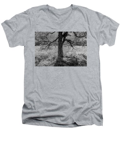 Coulee Oak Men's V-Neck T-Shirt