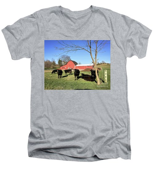 Country Cows Men's V-Neck T-Shirt